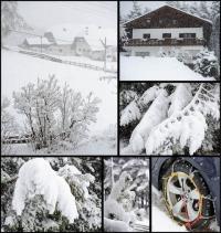 Collage-2012-04-24-0013.jpg